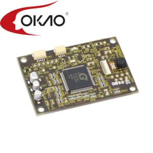 HVC-with-OKAO